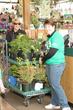 The Garden Center Group Announces New Partnership with Garden Media...