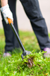 Landscaping invention makes weeding easy