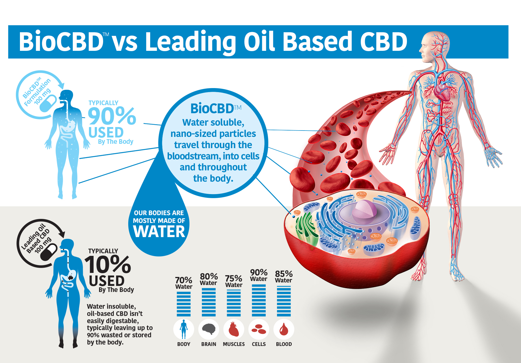 New Water Soluble CBD Provides Manufacturers ...