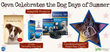 Ceva Dog Days of Summer Giveaway