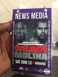 Boxing News and Views at the Heavyweight Championship of the World