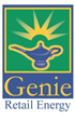 Michael Stein Named CEO of Genie Retail Energy, Inc.