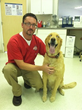 Ohio Animal Hospital Recognized for Excellence as Best Veterinarian