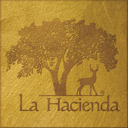 La Hacienda Drug and Alcohol Treatment Center Logo