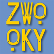 Communicate in Complete Anonymity with ZWOOKY