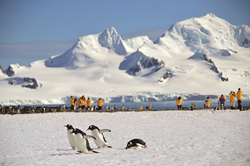 Discover Antarctica with Quark Expeditions