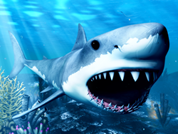 Explore the World of Sharks Without Fear Using Virtual Reality