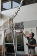 Late Santa Rosa Junior College Professor's Creation, Fresno the Giraffe, Inspires Oakland Zoo