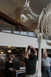 Docent Paul Ferreira Taking Photo of Skeleton