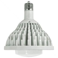 Lunera Susan LED Light Bulb