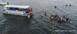 An aerial drone shot shows Health and Environmental Risk Assessment (HERA) team members evaluating an Atlantic bottlenose dolphin in the Indian River Lagoon. Photo credit Georgia Aquarium/Kevin Brown