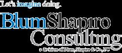 BlumShapiro Consulting