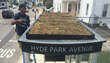 Oly-Ola's six-inch high Teco-Edg contains living roof garden planters topping bus shelters in  Boston's Hyde Park neighborhood. Photos courtesy of Trevor Smith, Land Escapes Design, Inc.