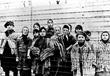 1945 Photograph, Auschwitz Children
