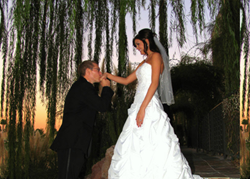 Las Vegas Wedding Chapel Packages