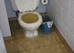 Sewage Backup Overflow