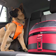 Sleepypod Mobile Pet Bed with PPRS Handilock is a Top Performer in Landmark Study by Subaru and the Center for Pet Safety