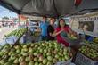Apples from Nana Mae's Organics at Mar Vista Farmers' Market
