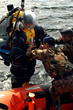 OceanWorks International Completes Upgrades to Italian Navy HARDSUIT™ ADS
