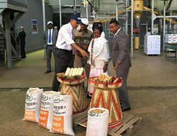 During his presidential visit to Ethiopia yesterday, United States President Barack Obama toured select agricultural sites such as FAFFA foods share company. In this picture, local women farmer Gifty Jemal Hussein tells the President how planting DuPont P