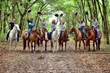 BG Capital Group's Bobby Genovese Launches BG Trail Rides LLC in Partnership with the Florida Horse Park