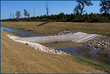 Restoring Wetlands During the Drought with Hydraulic Engineering