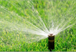 How Much Irrigation Does Your Lawn Really Need?