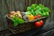 Espoma Organic Launches Garden to Table Photo Contest