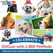 Celebrate DOGust, the Shelter Dog Birthday, with 1-800-PetMeds® Sweepstakes
