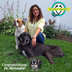 My Vet's the Best winner, Dr. Mariliz Hernandez of Bellerose Animal Hospital in Bellerose, New York.
