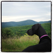 Hiking | Go Blue Ridge Travel