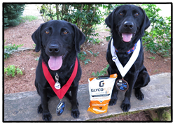 Elsie May and Olie sit with their bag of Glyco Flex Joint Supplements made by VetriScience Laboratories.