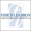 Attorney Becky Shapiro Joins Fibich, Leebron, Copeland, Briggs & Josephson