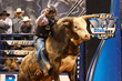 Professional Bull Rider and Rising Star Tyler Harr Secures Real Time Pain Relief as New Sponsor