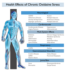 Health Effects of Chronic Oxidative Stress