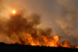 Don't Get Burned: Amica Insurance Shares 5 Wildfire Tips
