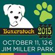 Boxerstock 2015 Music Festival