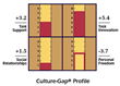 Culture-Gap® Profile
