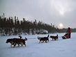 Dog sledding on North Knife Lake!