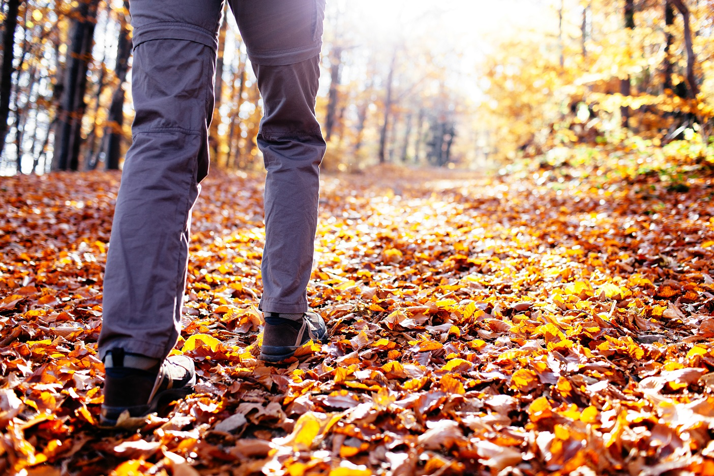 New Life Hiking Spa In Vermont Offers A Fall Foliage