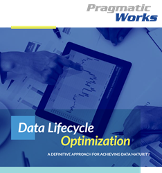 Data Lifecycle Optimization
