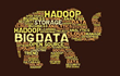 Upcoming Webinar to Address How to Extract Value from Hadoop