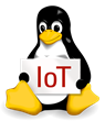 Accelerated Announces New Embedded Linux Distribution for the Internet of Things