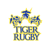 Write About Something Novel, Write About Rugby!