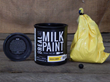 Innovative New Packaging and Website for Real Milk Paint