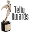 35TH Annual Telly Awards Select MR Direct as Winner