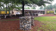 Super-Sod Announces the Grand Opening Celebration of their New Store in Cary, North Carolina
