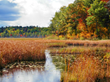 Experience the Adirondack Coast's Signature Colors this Fall