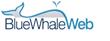 Blue Whale Web Names Brad Sams as Executive Editor
