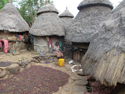 The Ethiopian village of Kilenso Moconissa, where Ethiopian Ardi coffee originates